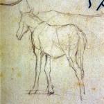 Disegni di Brancaleone Cugusi da Romana: studio per Cavallo